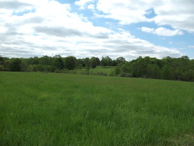 Farm land on site of Monmouth Battlefield
